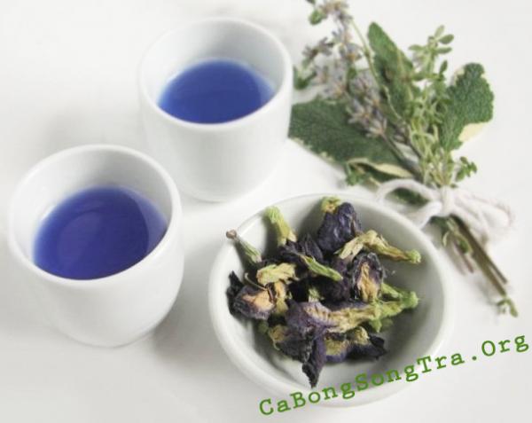 cách làm trà hoa đậu biếc